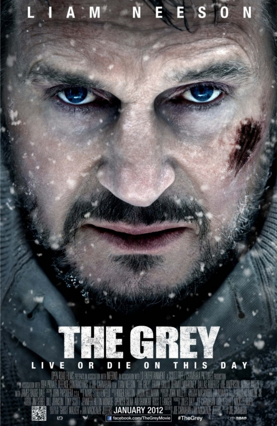 the-grey-poster