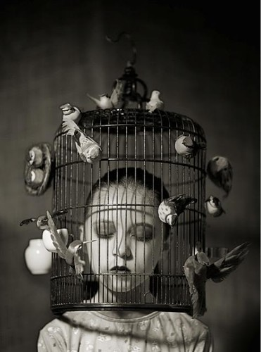 cage,pb,photography,bw,bird,birdcage-3f10d107ff114931f760a9548d35869b_h