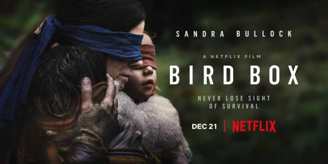 Script To Screen Bird Box